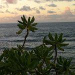 Storm off Guam